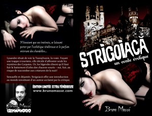 Strigoiaca - 13 Web